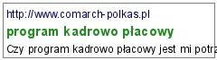program kadrowo płacowy